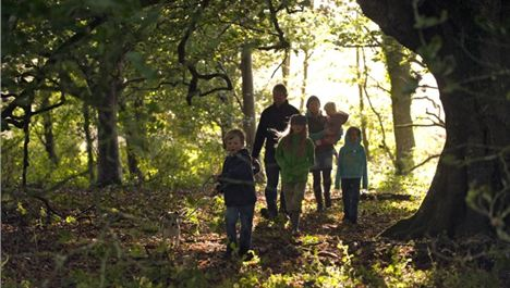Win A Family Annual Pass For The National Trust